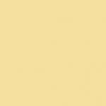 SN 3413_S 1020-Y10R