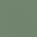 SN 5010_S 4010-G10Y